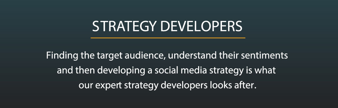 Strategy Developers